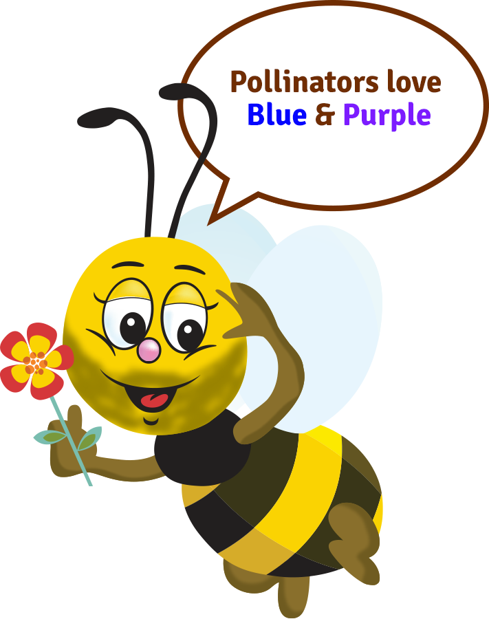 Pollinators love Blue & Purple