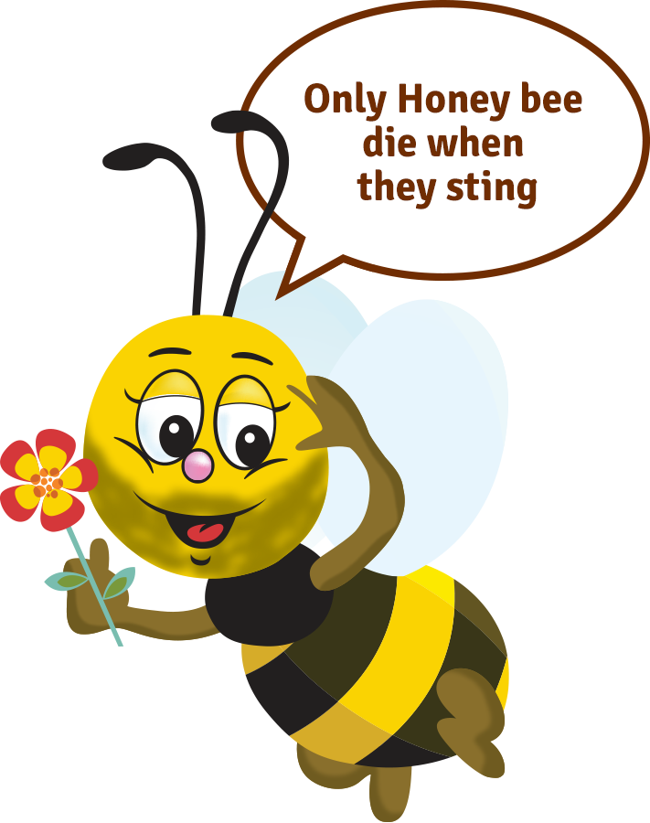 Only Honey bee die when they sting